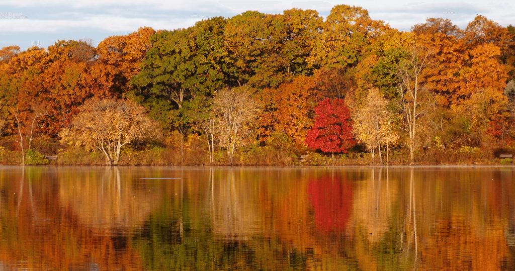 Twilight Covening in Autumn